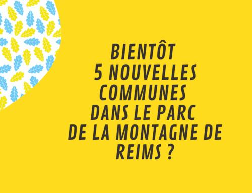 Un nouveau périmètre pour le Parc de la Montagne de Reims ?